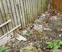 backyard cleanup melbourne